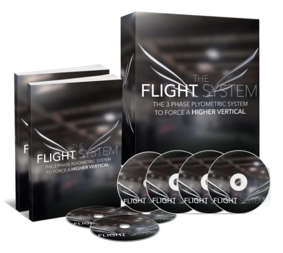 INTRODUCING THE FLIGHT SYSTEM