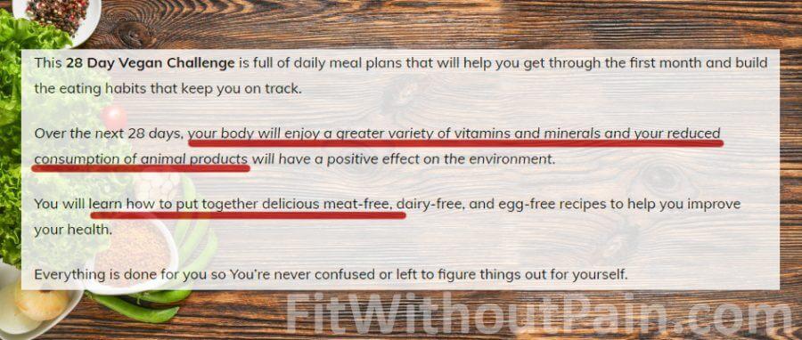 1 Month Vegan Challenge 28 day