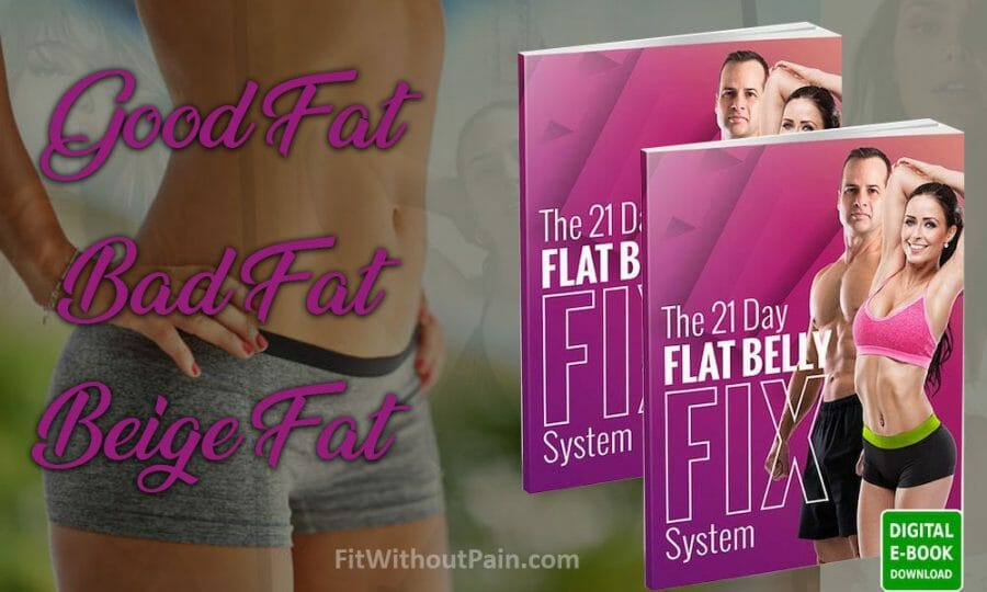 Flat Belly Fix Types of Fat