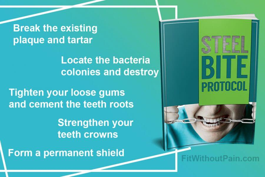 Steel Bite Protocol How it Works