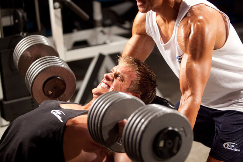 create-muscle-building-plan