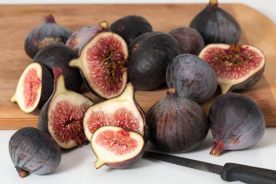 fig health