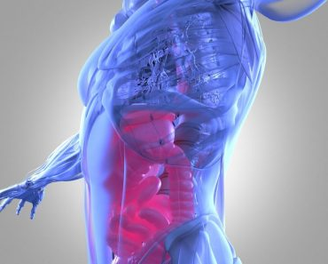 The Complete Guide To Fixing Your Stomach Problems Once and For All