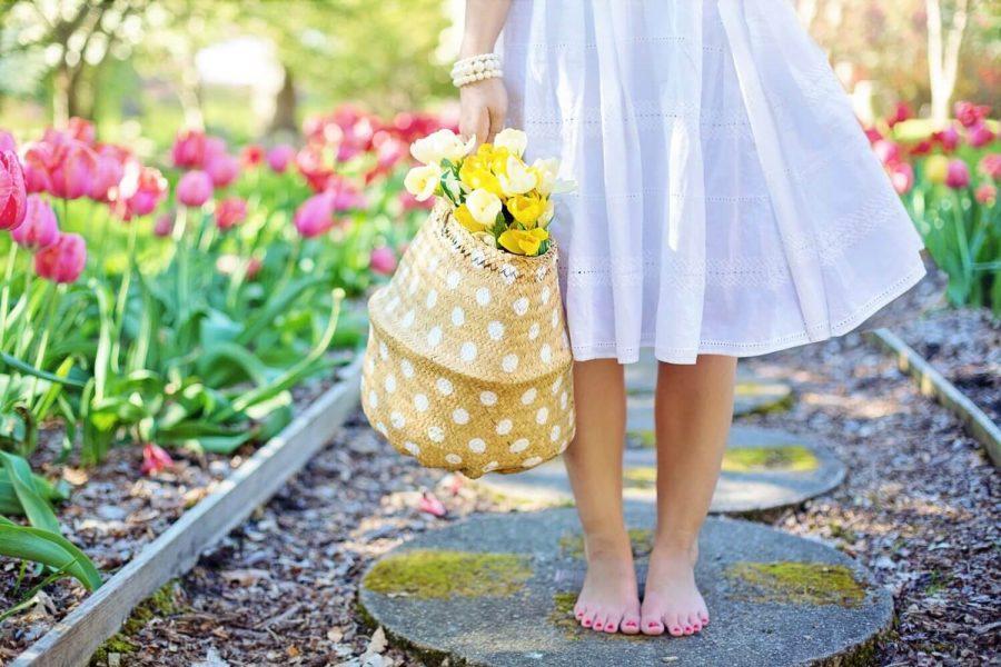 spring-2298279_1920.jpg