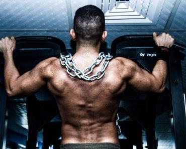 V3 Vegetarian Bodybuilding System Review: Plant-Based Protein?