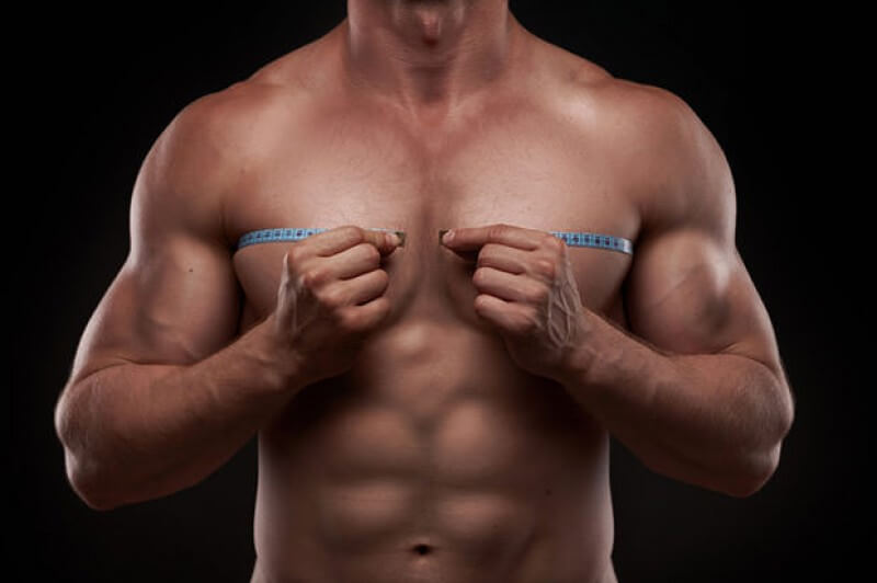 upper-muscles