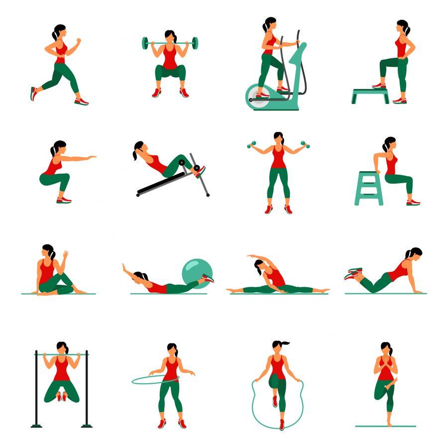 workout diagram