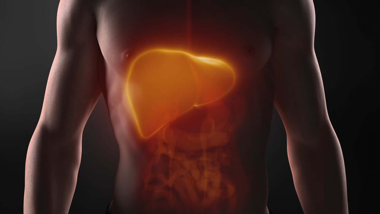 Liver is an organ o fall in love with!
